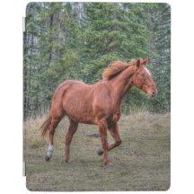 Portrait of Sorrel Mare Equine Horse Photo 2 iPad Cover