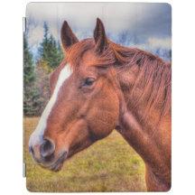 Portrait of Sorrel Mare Equine Horse Photo iPad Cover