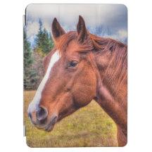 Portrait of Sorrel Mare Equine Horse Photo iPad Air Cover