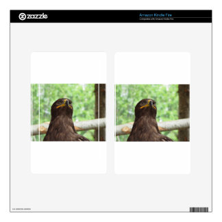 Portrait of steppe eagle decal for kindle fire