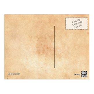 Portrait of the Postman Joseph Rouli Van gogh vinc Post Card