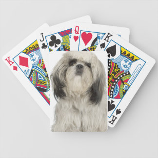 Portrait of Tibetan terrier puppy Bicycle Playing Cards