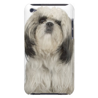 Portrait of Tibetan terrier puppy Case-Mate iPod Touch Case