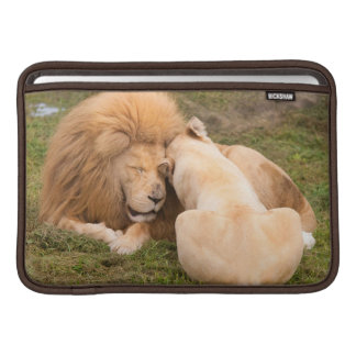 Portrait of Timbavati White lion male and female MacBook Sleeve
