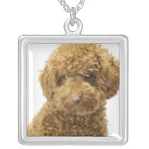Portrait of Toy Poodle Silver Plated Necklace