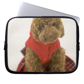 Portrait of Toy Poodle wearing cloth sitting Laptop Sleeves