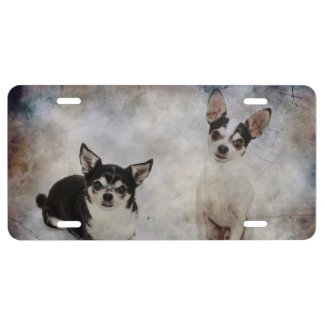 Portrait of two chihuahua's license plate
