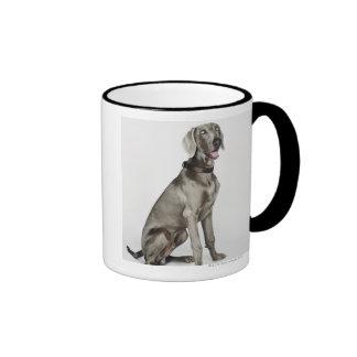 Portrait of Weimaraner dog Ringer Mug