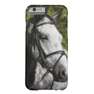 portrait of white horse 2 barely there iPhone 6 case