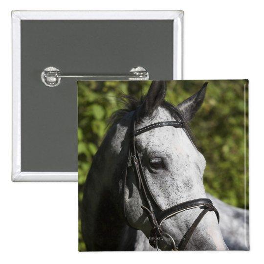 portrait of white horse 2 button