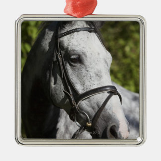 portrait of white horse 2 metal ornament