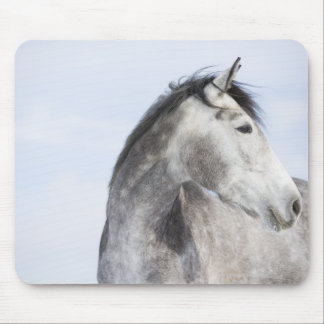 portrait of white horse 2 mouse pad