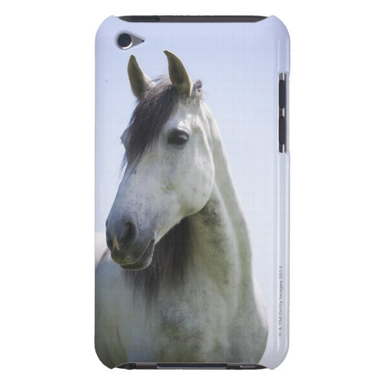 portrait of white horse iPod touch case