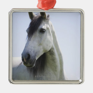 portrait of white horse metal ornament