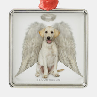 Portrait of white Labrador retriever wearing Metal Ornament