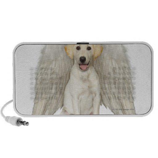 Portrait of white Labrador retriever wearing Notebook Speaker