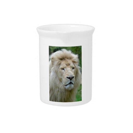 Portrait of white lion beverage pitcher