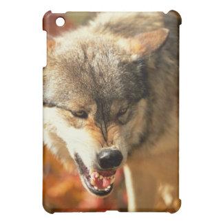Portrait of wolf growling iPad mini cover