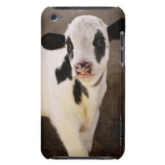 Portrait of young calf in stable barely there iPod cover
