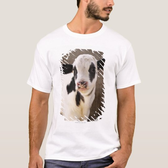 Portrait of young calf in stable T-Shirt