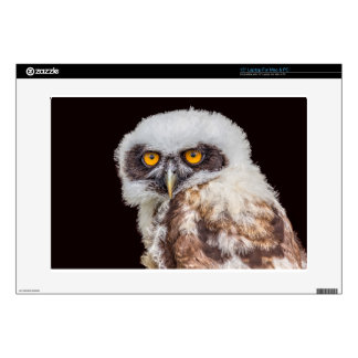 """Portrait of young spectacled owl 15"""" laptop skin"""