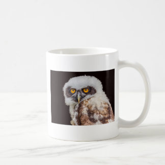 Portrait of young spectacled owl coffee mug