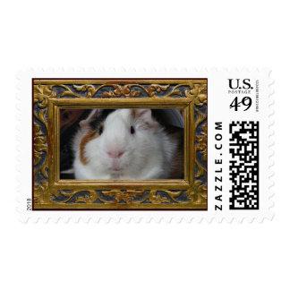 Portrait Postage Stamp