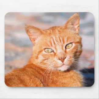 Portrait red cat mouse pad