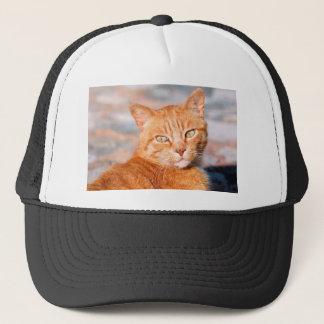 Portrait red cat trucker hat
