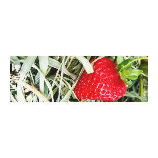 Portrait - Ripe Strawberry on straw Canvas Print