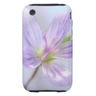 Portrait - Spring Beauty Flower iPhone 3 Tough Covers