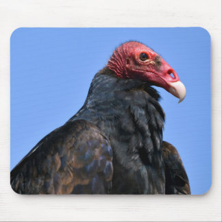 Portrait Turkey vulture Mouse Pad