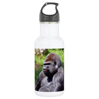 Portrait western lowland gorilla water bottle
