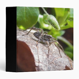 Portrait - Young Spider 3 Ring Binder