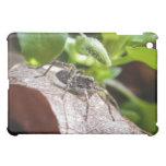Portrait - Young Spider iPad Mini Cases