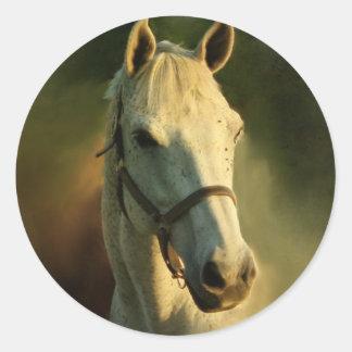 portriat del caballo pegatina redonda