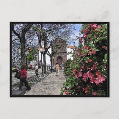 (Portugal) Funchal, Madeira Postcard postcard