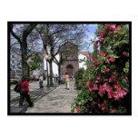 (Portugal) Funchal, Madeira Postcard