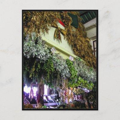 (Portugal) in Funchal Market Postcard postcard