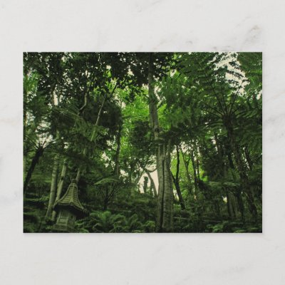Portugal Madeira : Canopy of Lushness Postcard postcard