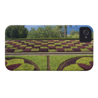 Portugal, Madeira Island, Funchal. Botanical iPhone 4 Case