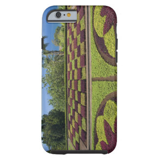 Portugal, Madeira Island, Funchal. Botanical Tough iPhone 6 Case