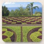 Portugal, Madeira Island, Funchal. Botanical Coaster