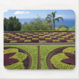 Portugal, Madeira Island, Funchal. Botanical Mouse Pad