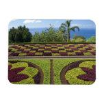 Portugal, Madeira Island, Funchal. Botanical Rectangular Magnets