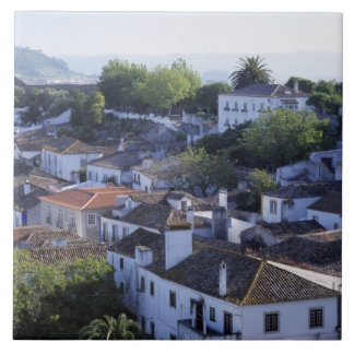 Portugal, Obidos. Elevated view of whitewashed Ceramic Tiles