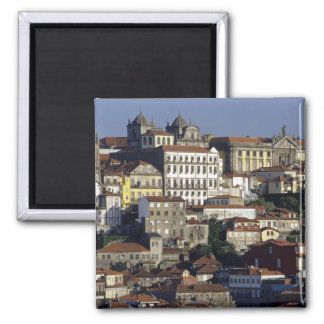 Portugal, Oporto (Oporto). Casas históricas y Imán De Frigorifico