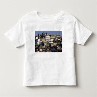 Portugal, Oporto (Porto). Historic houses and Shirt