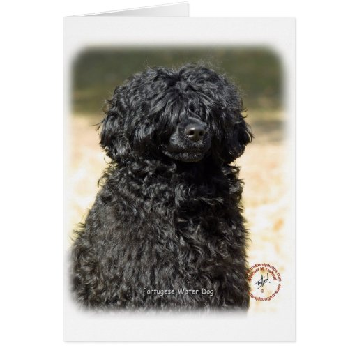 Portugese Water Dog 9R016D-151 Card
