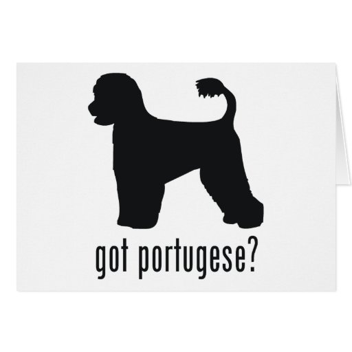 Portugese Water Dog Cards
